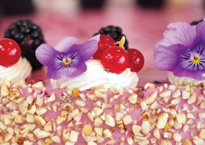 Hindbær/Chokolademousse